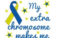 Extra-chromosome